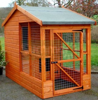Side Door Apex Shiplap Dog Kennel and Run 204